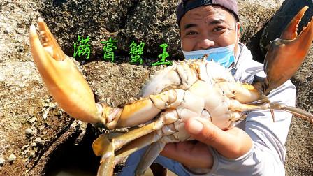 浑浊水坑擒获深藏的大蟹王,满满都是膏不舍得吃,一只能卖好几百