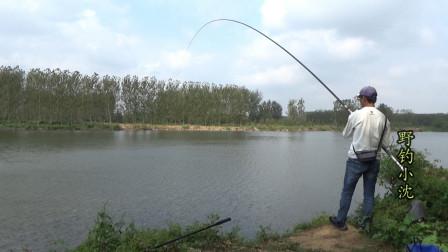 测试:重量只有500多克的13米长竿!又轻又细,能侧飞多大的鱼呢