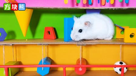 小仓鼠挑战一口气闯关到终点,差点在半路翻车!