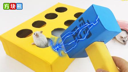 小仓鼠挑战打地鼠游戏,为什么最后翻墙逃跑了呢?