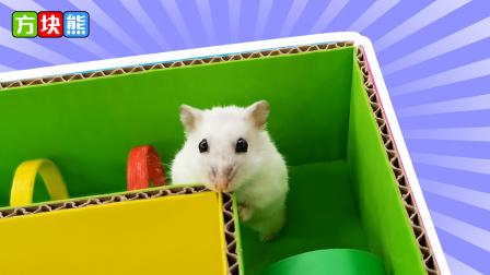 小仓鼠闯关彩虹迷宫,到终点却没有出口