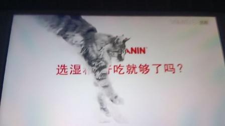 皇家主食级湿粮 15秒广告4 淘宝 天猫618