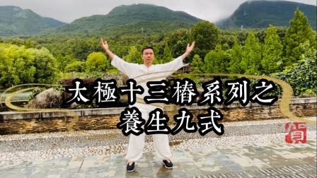 黄山老师太极内功十三桩系列之养生九式教学示范,易学易练!每天三分钟,延年益寿!