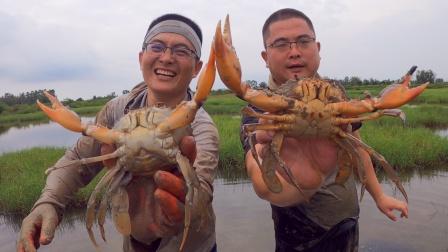 这青蟹异常凶猛!地球哥手指差点被夹断,赶海真危险