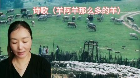 诗歌(羊阿羊那么多的羊)