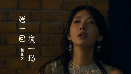 魏佳艺《爱一回疯一场》,伤感催泪,听得心碎!