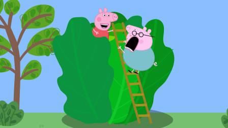 小猪佩奇和猪爸爸在巨型青菜捉迷藏