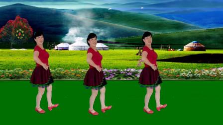 简单好看好学的广场舞【雪莲花】优美大气漂亮藏族舞附背面分解