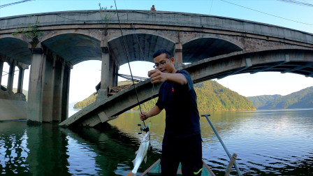渔轮拉到快报废!桥下鱼群异常活跃,桥上老人看了连忙劝我别慌张