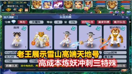 梦幻西游:老王展示雪山175级高端天地号,高成本炼妖冲刺三特殊