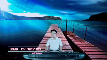 《诺言》DJ电子琴音乐