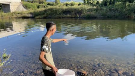 奶奶家一群的鸭子不对劲,都到河里下鸭蛋,这样捡蛋太过瘾了