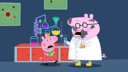 小猪佩奇和猪爸爸做实验