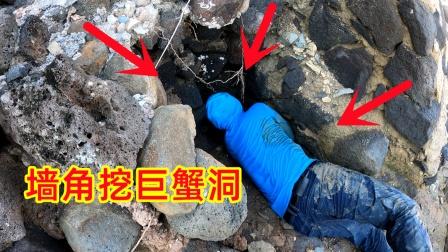 挖开巨大螃蟹洞,抓出凶猛异常的大螃蟹,渔夫被夹的嗷嗷叫