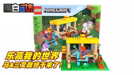 【黑白砖访】★乐高LEGO★我的世界21171马厩