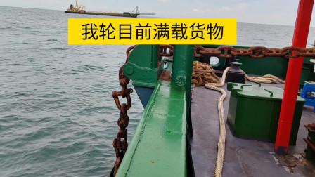 轮机长在船上捡鱼,几分钟就捡到8条,太刺激了