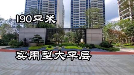 一个标准及实用的好户型190平米大平层大阳台入户花园