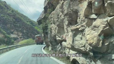 《藏区蜀地》41、青海之路有多远,野生猴子的悲哀