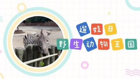 🔸武汉探店🔸武汉野生动物王国