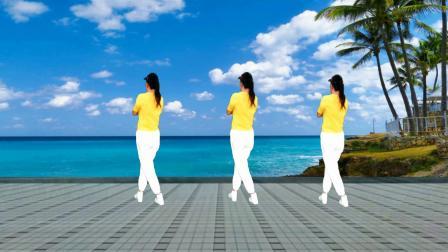 动感DJ广场舞《家在御江南》背面完整版,歌曲动听舞步清晰易学