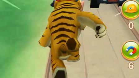 熊出没游戏:远远的就看见老虎道具了