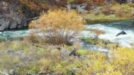 阿尔山这么美的秋色,一定得请你看看!