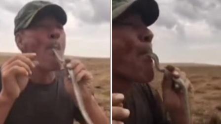 男子表演吞蛇出意外 舌头被毒蛇咬伤后身亡