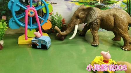 过家家儿童玩具,分享恐龙世界玩具视频