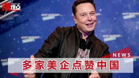 世界互联网大会乌镇峰会开幕,马斯克盛赞中国,承诺加大对华投资