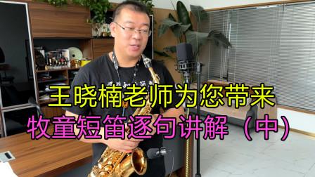 萨克斯练习运指效果非常好的歌曲,牧童短笛逐句讲解(中)