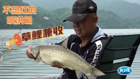 《游钓中国7》第20集 秋钓响洪甸之草鲤连连