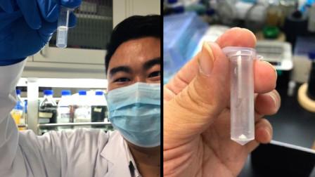 中国科技又一颠覆性突破!二氧化碳变淀粉,对人类发展意义重大