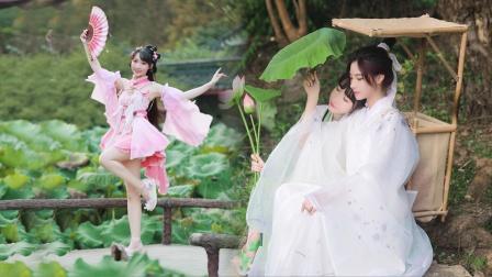 荷花仙子和小书生《广寒谣》绝美小甜剧你爱了吗?