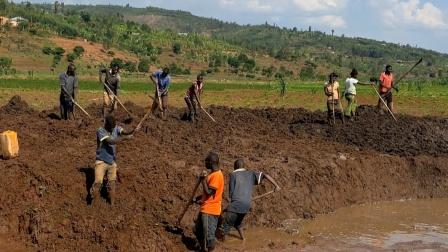 我在非洲养鱼,人海战术挖鱼塘,比用挖机更便宜