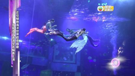 正佳極地海洋世界歡度國慶 多場水下表演全天輪番上演