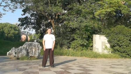 传统太极拳85式2段,吕炳松