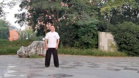 国庆节献礼,吕炳松慢练传统太极拳85式