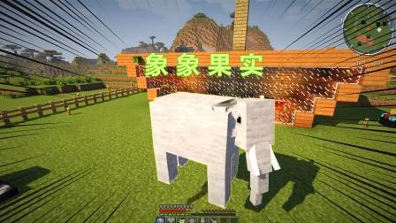 我的世界海贼王38:吃了象象果实,我直接变成了一头大象
