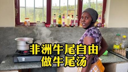 非洲牛尾超级便宜,实现牛尾自由,做牛尾汤