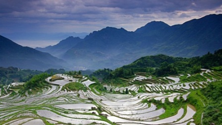云和梯田湿地 亦山亦水的高山泽国 云水天来的观景田园