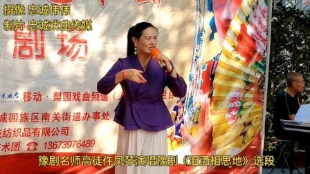 喜乐艺术团豫剧名师高徒仵凤琴演唱豫剧《泪洒相思地》选段现场视频