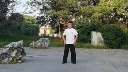 吕炳松快练.发劲,传统杨氏太极拳85式