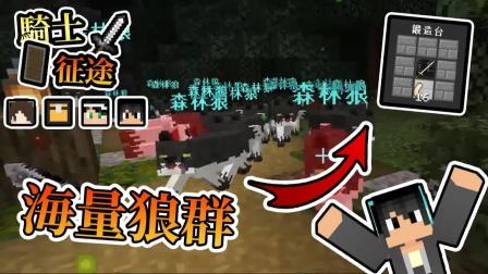 熊猫团团【我的世界】RPG冒险地图 - 骑士征途 海量狼群涌