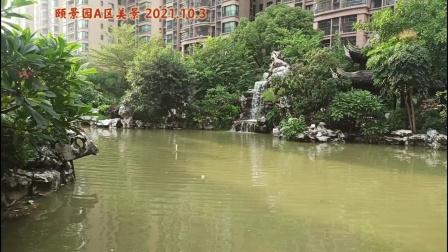 颐景园A区美景  2021.10.3