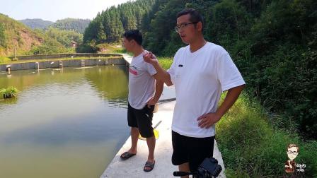 筹划的第二个溪石斑基地,总投产40万,希望把养冷水鱼做成产业