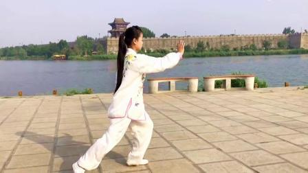 传统杨氏85式太极拳 优美的音乐正宗的传人演练