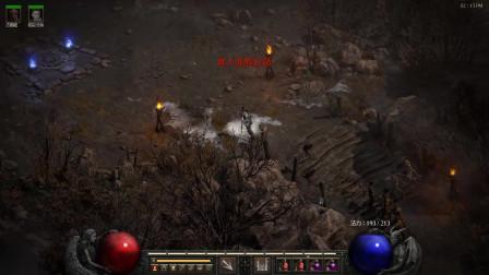 ZUDDY《暗黑破坏神2:重制版》Asn陷阱流 三难度全流程 第14期