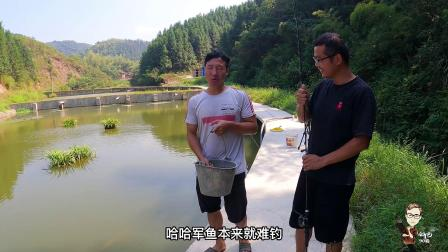 山泉水塘里很多大军鱼,刘哥叫我钓条吃,不去鳞红烧味道出奇的好