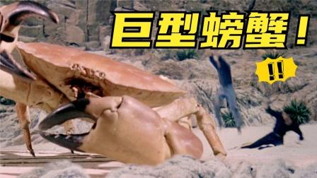比赶海视频还刺激,居然捡到这么大的螃蟹,太爽了吧?