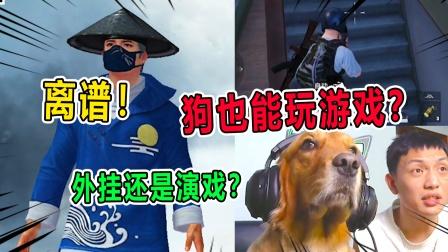 侦探汤姆:狗也会玩游戏?到底是外挂还是演戏?离谱!